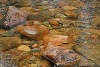 Rocks - ANP