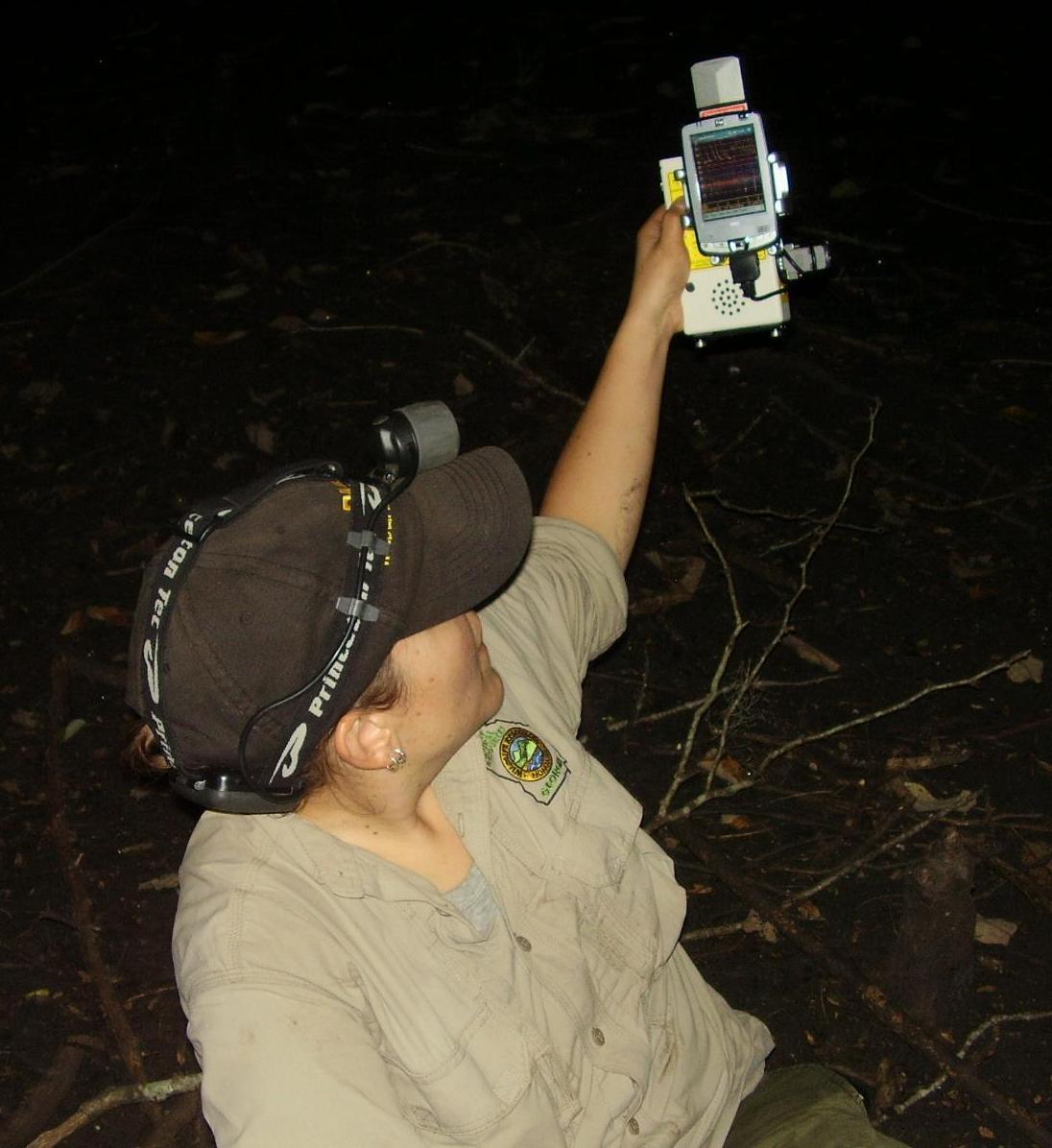 Wildlife biologist Trina Morris using Anabat device.