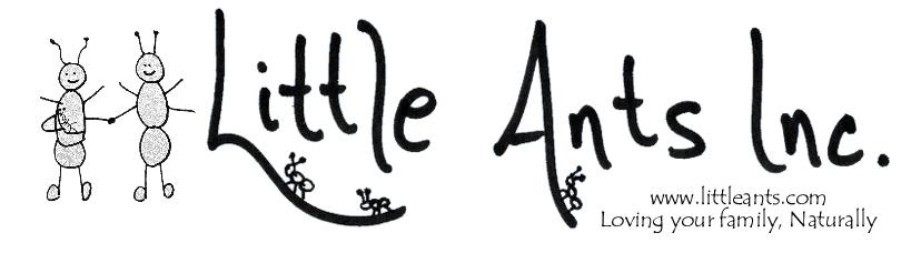 Little Ants Inc.