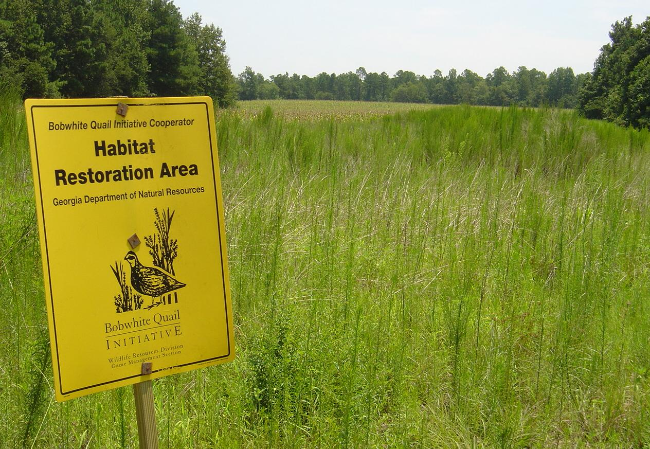 Photo of BQI habitats.