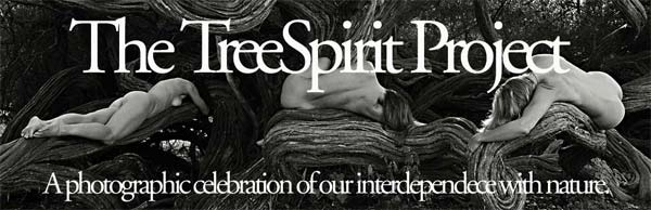 The TreeSpirit Project: a photographic celebration of our interdependence with nature.